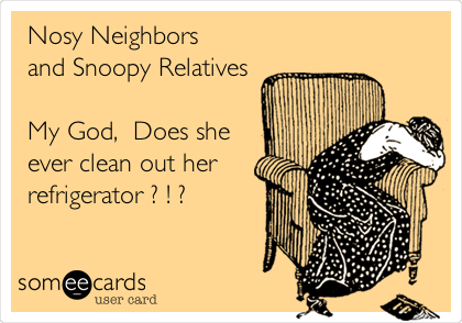 Holiday Shine Challenge- Snoopy Relatives Love A Dirty Fridge