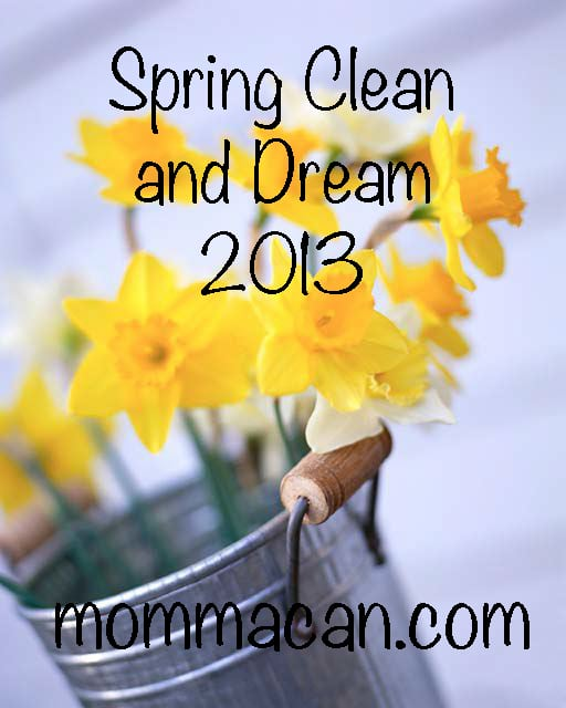 spring clean and dream 2013