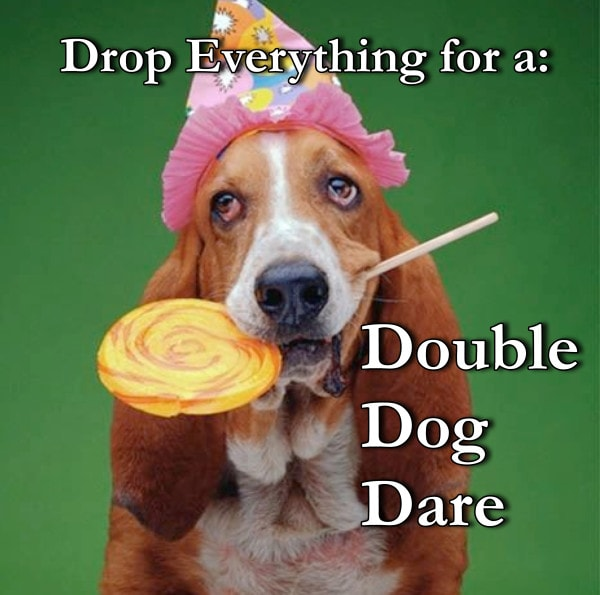Double Dog Dare Two
