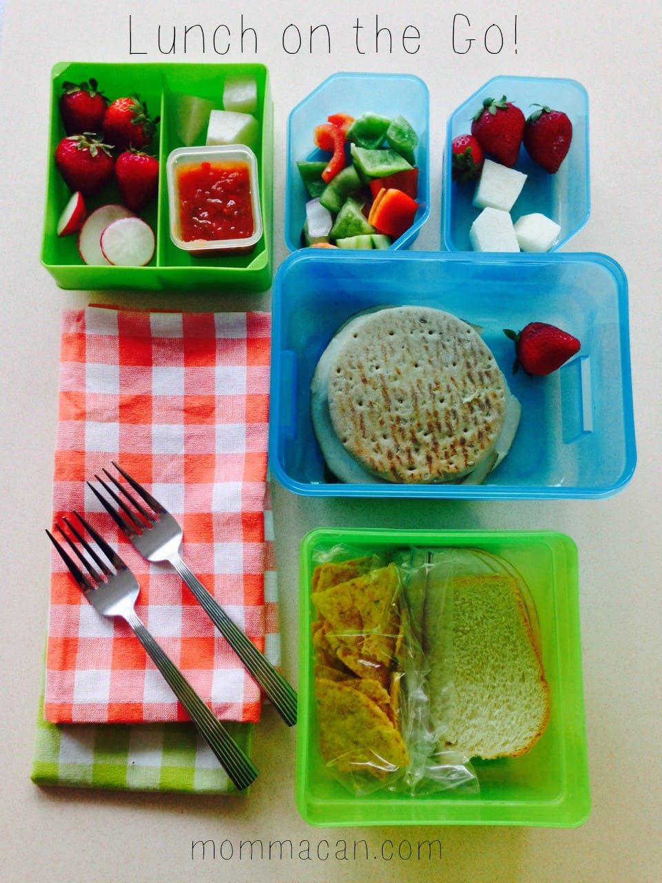 Fit and Fresh Bento Box and Lunch On The Go