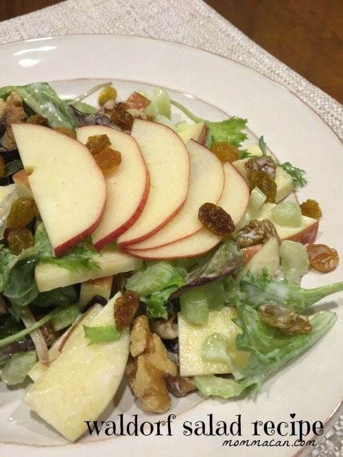 Family Friendly Waldorf Salad Recipe