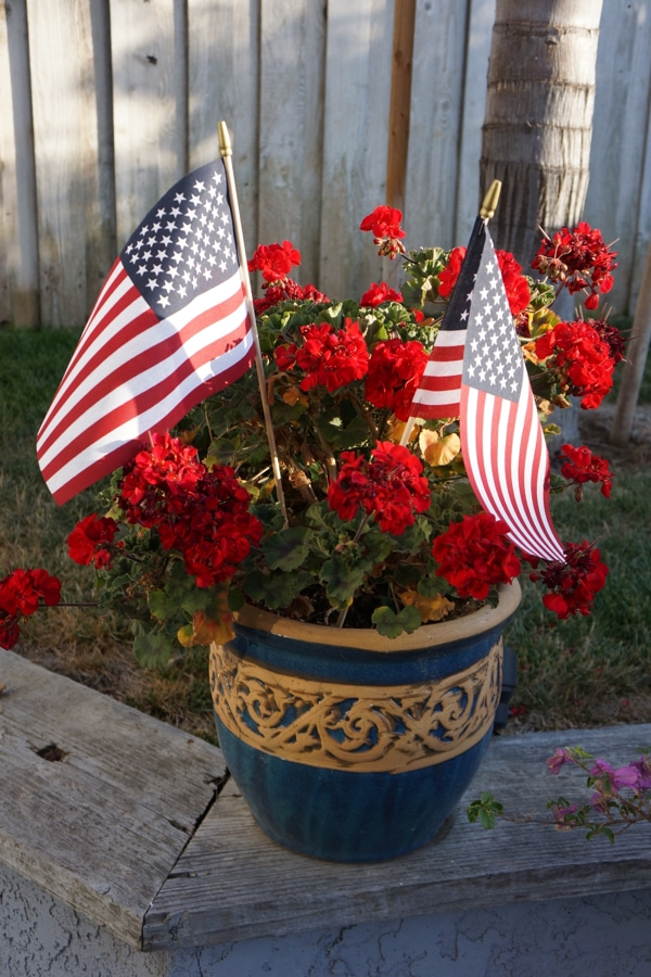 4th of July Decorations - Planter with red geranmiums and flags