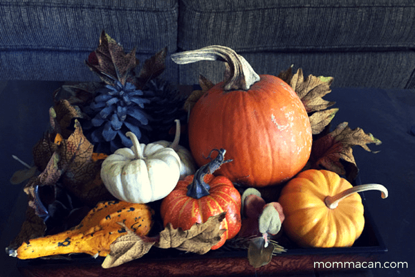 festive-fall-home-tour-sittiing-room-with-pumpkin-squash-and-solid-bronze-pinecones-mommacan-com