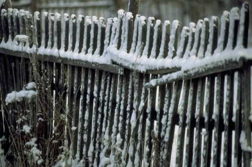 Snowy Country Fence