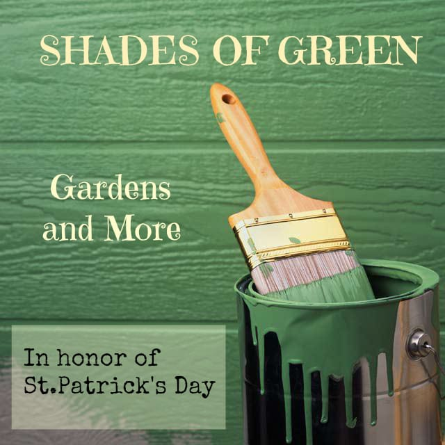 Shades of Green in the Garden In Honor of St. Patrick's Day