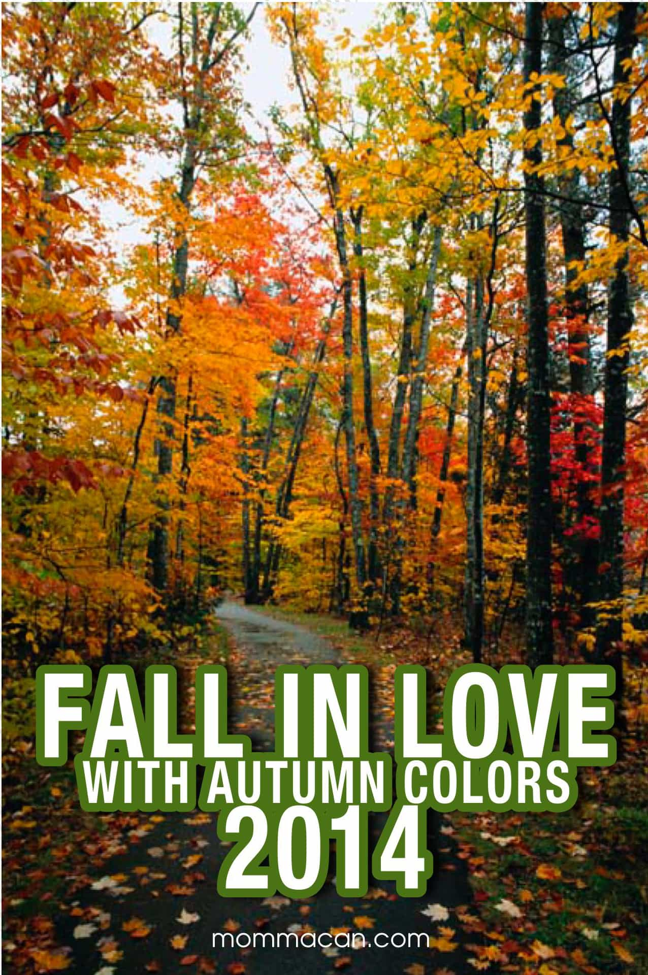 Falll In Love With Autumn Colors – Cypress Green