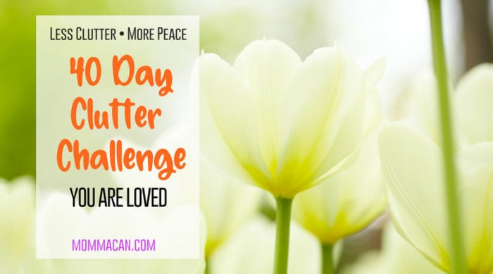 40 Day Clutter Challenge You Are Loved Are you ready to declutter and renew your home this spring? 40 days of clutter challenges and wonderful ways to rediscover how to love what you have and make your home wonderful!
