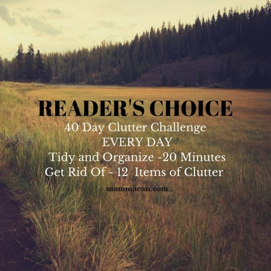 READER'S CHOICE - Clutter Challenge 40 Day 12 items each day