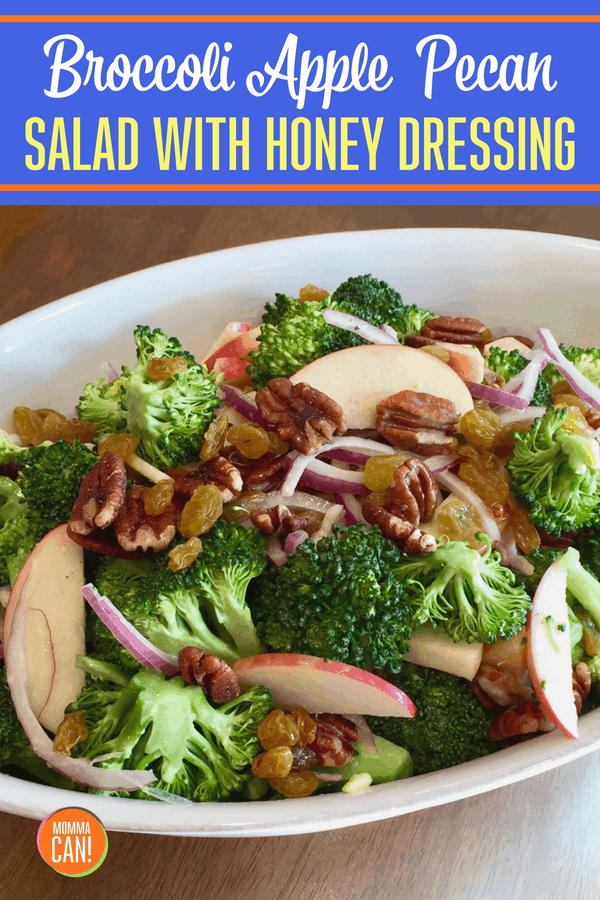 Simple Broccoli Apple Salad with Pecans, golden raisins and a dazzling honey dijon dressing.