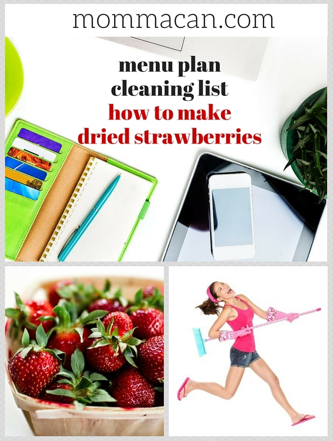 Menu Plan, Cleaning List and Oven Dried Strawberries
