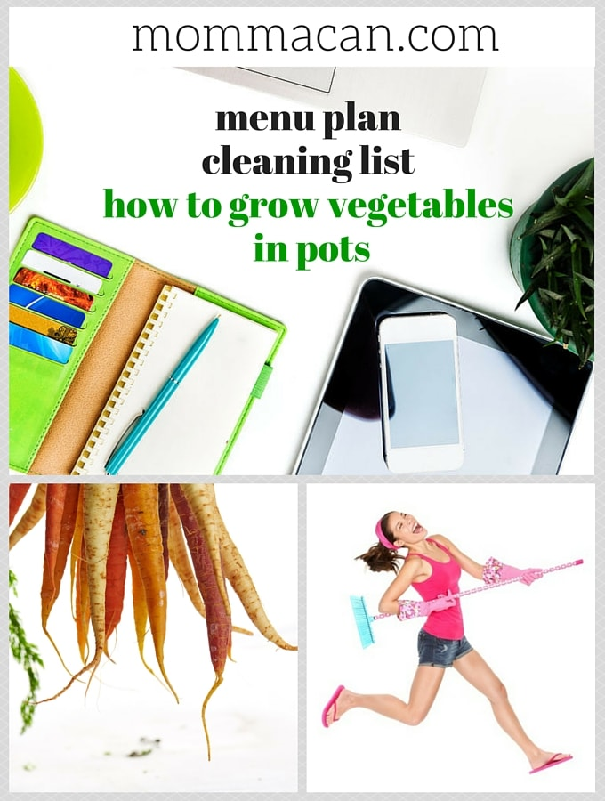 Menu Plan, Cleaning List Plust How To Grow Vegetables In Pots