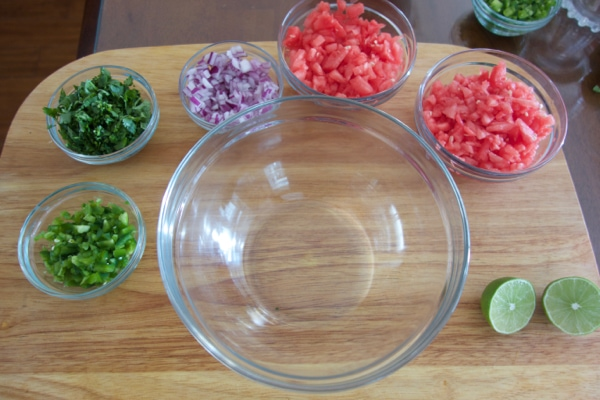 Ingrediends for Watermelon Salasa Recipe - mommacan.com