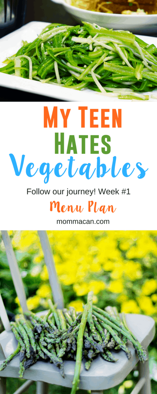 My Teen Hats Vegetables. Follow our journey to get Captain Stubborn to eat his greens!