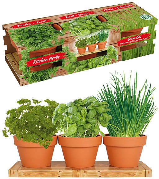 Herb Growing Kit | Mother's Day
